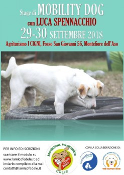 Mobility Dog con Luca Spennacchio